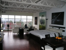 Beautiful furnished loft for short term rent